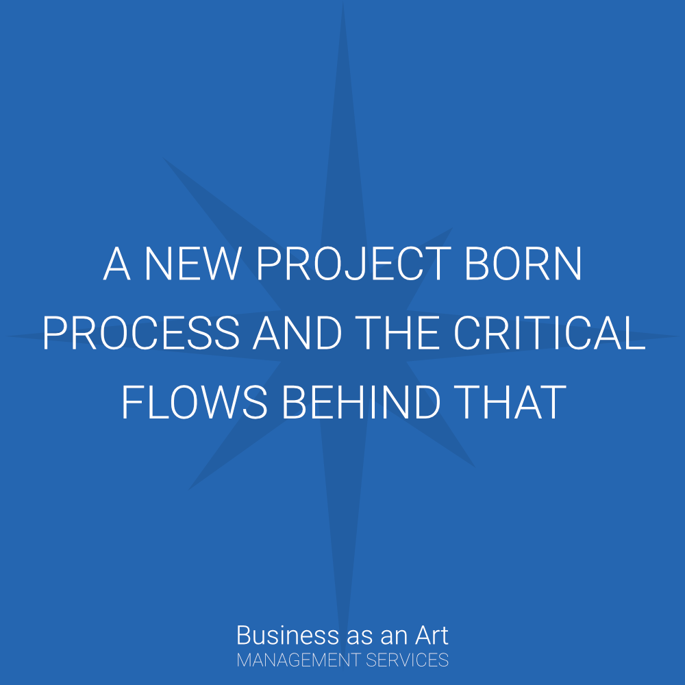 new project born process and the critical flow behind that