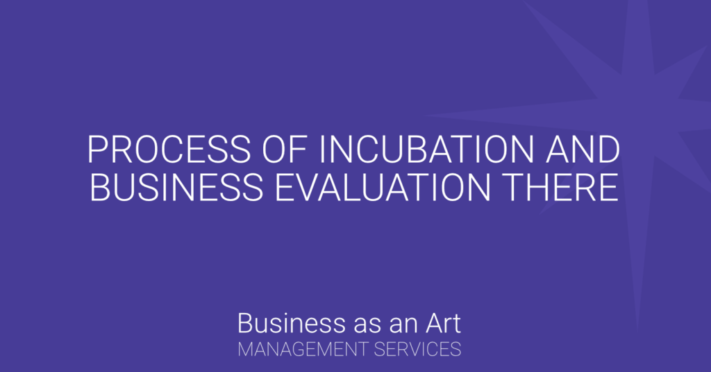 process-incubation-business-evaluation