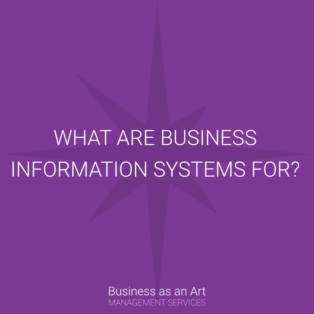 what are business information systems for is