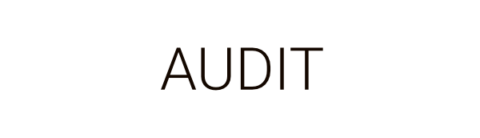 Audit by Business as an Art