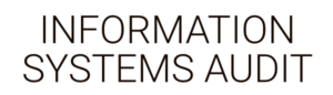 Information Systems Audit by Business as an Art