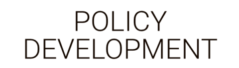 Policy Development by Business as an Art