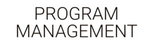 Program Management by Business as an Art