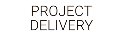 Project Delivery by Business as an Art