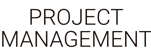 Project Management by Business as an Art